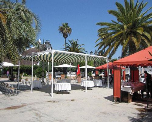 restaurante para bautizos en valencia - palmeras